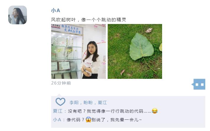 郑州北大青鸟翔天信鸽学习怎么样,看毕业后的我们