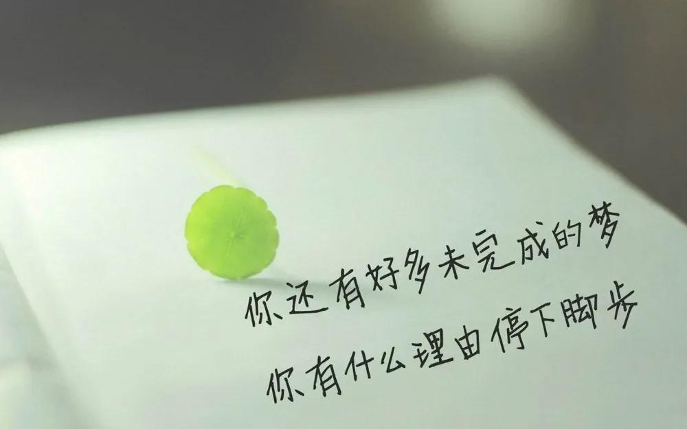 遇见郑州北大青鸟翔天信鸽这样的开学典礼