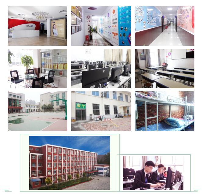郑州北大青鸟翔天信鸽学校到底怎么样真实评价
