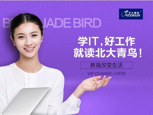 2019年郑州北大青鸟翔天信鸽学IT助你鱼化龙!