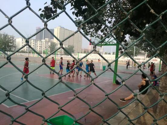 郑州北大青鸟翔天信鸽优美校园环境展示