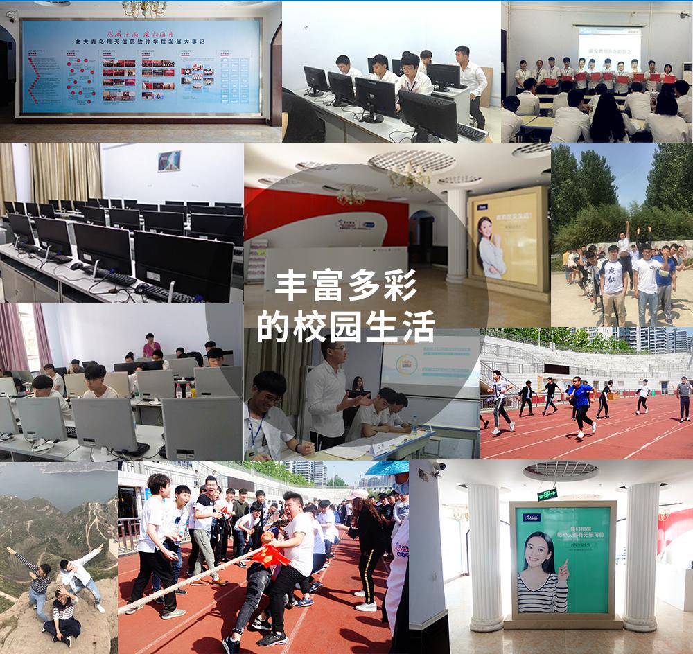 郑州北大青鸟翔天信鸽校区丰富多彩的校园活动
