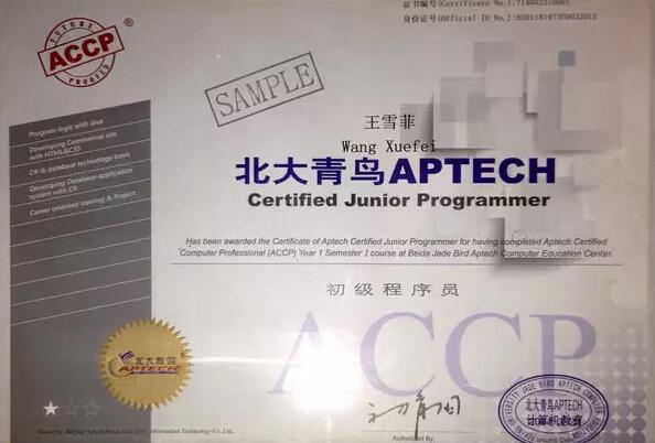 郑州北大必威betway866初级程序员认证